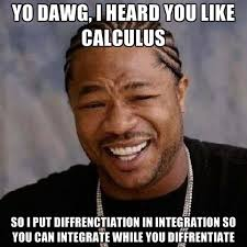 Calculus Meme - yo dawg i heard you like calculus so i put diffrenctiation in
