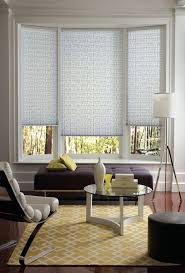 Window Treatments Living Room 18 Best Shades Pirouettes Images On Pinterest Window Coverings
