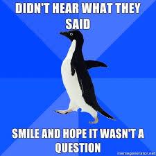 Cute Penguin Meme - the 25 best penguin meme ideas on pinterest club penguin memes