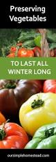 preserving vegetables harvesting your garden