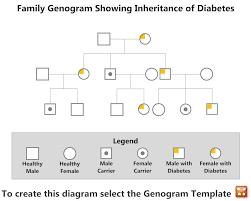 100 genogram word template genogram template for mac forms