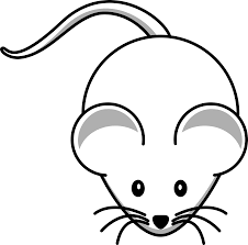 valuable ideas mice colouring pages 18 three mice in guinea pig