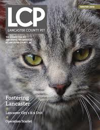 lancaster county pet winter 2016 by lancaster county pet issuu