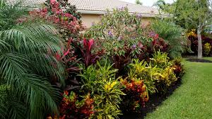 Tropical Landscaping Ideas by Tropical Landscape Pictures Solidaria Garden