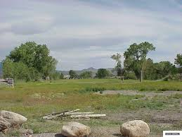 carson valley nv vacant land and lots for sale