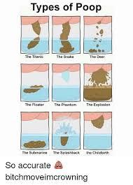 Pooping Memes - 25 best memes about types of poop types of poop memes