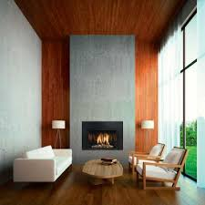 Gas Inserts For Fireplaces by Largest Gas Fireplace Inserts Bay Area Sf Blazefireplaces Com