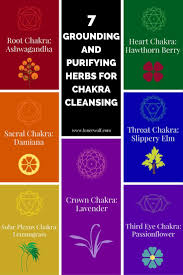 root chakra 7 chakra cleansing herbs for empaths and healers lonerwolf