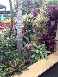 385 best tropical garden style images on pinterest tropical