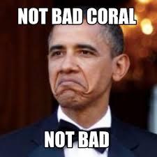 Not Bad Meme - meme creator not bad coral not bad meme generator at memecreator