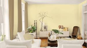 Bright Living Room Colors Living Room Beauty Wall Colors For Living Room Dignity Paint