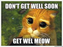 Feel Better Meme - image 1c9a4f23d5ca104f8b9c21a3c8a8a22c soon meme get well soon