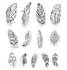 set of color feathers in style royalty free vector