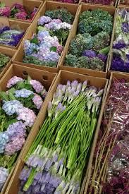 100 Flower Shops In Santa Best 25 La Flower Mart Ideas On Pinterest U La La Wrap Flowers