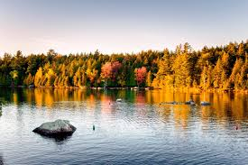 11 best road trips to see stunning fall foliage reader s digest