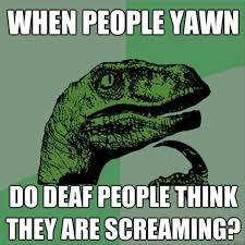 Best Memes Of 2013 - 7 funniest memes 2013 list salad