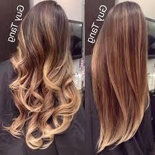 balayage straight hair on pinterest balayage straight ombre