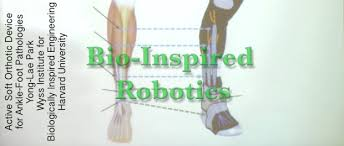 bio inspired robotics exoskeleton report