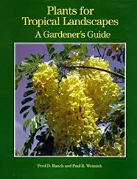 Tropical Plants Pictures - encyclopedia of tropical plants identification and cultivation of