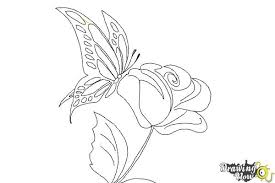 flower butterfly drawing opsit me