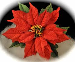 9 best fondant poinsettia images on sugar flowers