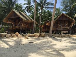 castaway beach bungalows right on the beach bungalows for