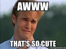Thats So Meme - awww that s so cute dawson crying meme generator