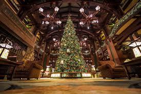 When Do Christmas Decorations Go Up At Disneyland Hotels Of Disneyland At Christmas Half Day Tour Disney Tourist Blog