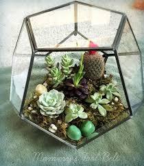 terrarium design extraordinary hanging glass terrarium containers