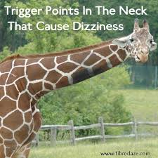 Light Headed Dizzy Nausea Best 25 Dizziness Causes Ideas On Pinterest Headache And