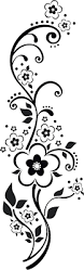 best 25 vector flowers ideas on pinterest floral border free