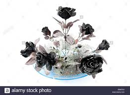 silver roses black and silver roses on white background stock photo 22572722