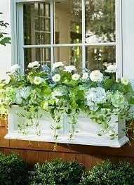 Metal Window Boxes For Plants - step by step guide to planting a window box window plants and
