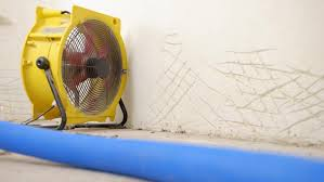 at what humidity level should one set a dehumidifier reference com