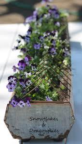 best 20 herb planters ideas on pinterest growing herbs 23 best gardening rain gutter grow system images on pinterest