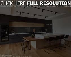 modern design kitchens cabinet kitchen cabinet ideas houzz modern design kitchen