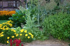 top 5 flower bed and backyard vegetable garden ideas mantis com