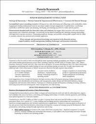 Management Consulting Resume Example by National Award Winning Executive Resume Examples Executive Cover