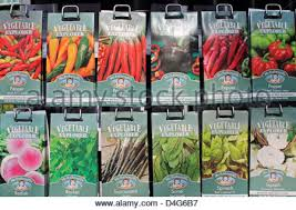 packets of seeds for sale at a garden centre surrey england uk