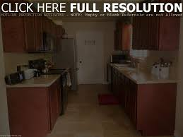 Exciting Small Galley Kitchen Remodel Ideas Pics Inspiration Baby Nursery Lovable Small Galley Kitchen Old Cabinet