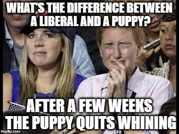 Liberal Meme - crying liberals imgflip