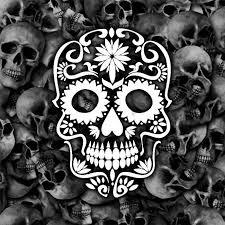 just skulls home