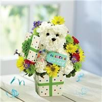 flowers for him flowers for him same day delivery leesburg fl miss s