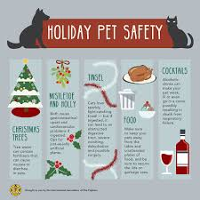 public safety toolkit holiday safety