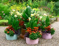 Planter Garden Ideas Raised Garden Planters Pictures 13 Amazing Garden Planter Ideas