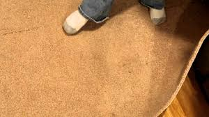 mold in carpet youtube