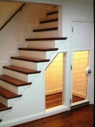 under stairs dog house has built this room for a dog