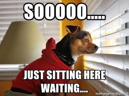 Just Sitting Here Meme - sooooo just sitting here waiting waiting dog at window