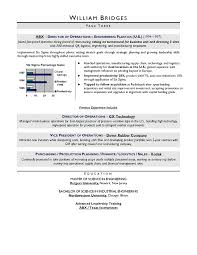 Sample Resume For Server Position by Ceo Sample Resume Award Winning Resume Writer Serving Chicago