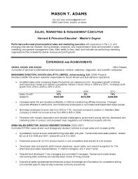 sample resume marketing executive marketing executive resume objective sidemcicek com